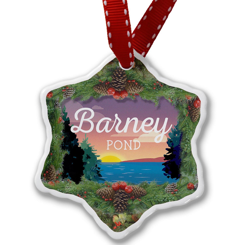 Amazon.com: Christmas Ornament Lake retro design Barney Pond ...