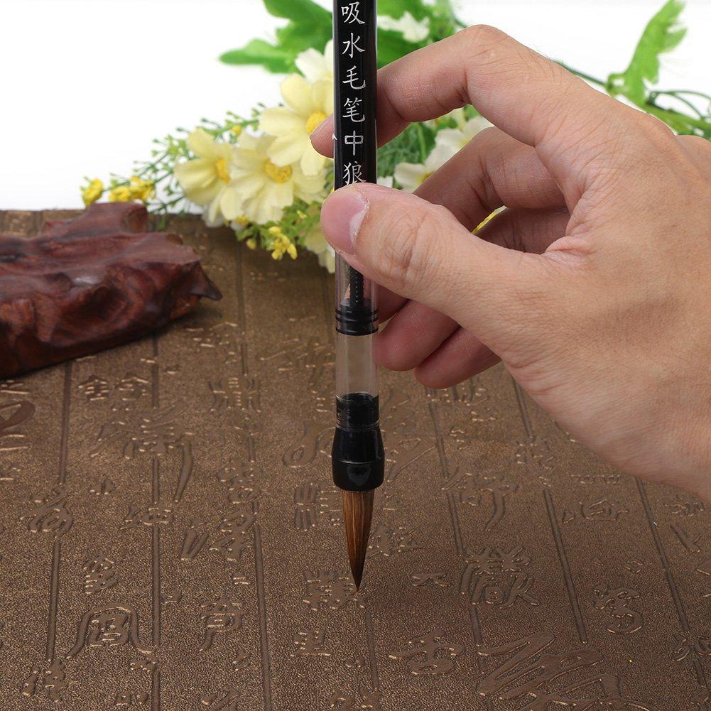kolben Wasser Farbe Pinsel Chinesische Kalligraphie Stift f/ür Anf/änger /Üben Malerei Kalligraphie Auf Wasser Schreiben Tuch 6 st/ücke Wasser Pinsel Stift Set
