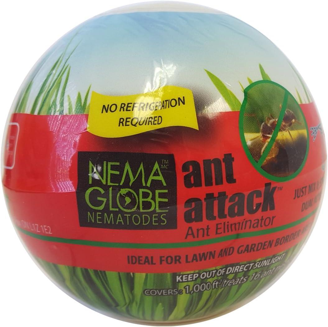 Nema Globe 10 Million Beneficial Nematodes (S.feltiae) Ant Attack Tick and Pest Control New No Refrigeration Required Formula