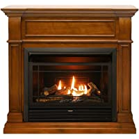 Duluth Forge Dual Fuel Ventless Fireplace-26,000 BTU, T-Stat Control, Finish Gas Fireplace Apple Spice
