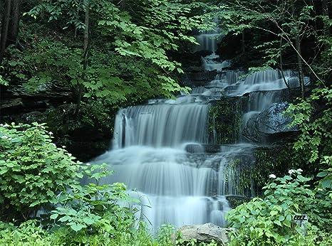 Amazon.com: Forest River - Tabla de cortar para cocina ...
