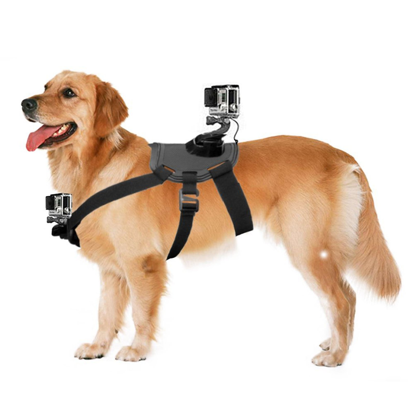 Dog Harness Back Mount For GoPro Hero 4/3+/3/2/1 SJCAM Sj5000+ Sj4000 Back And Chest With a Sports Camera Backpack Can Observe The World From The Dog's Vision For Medium And Large-size Dogs.