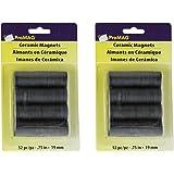 """Magnum Magnetics-Corporation ProMAG Round Ceramic Magnets, 3/4"""" 2 pack"""