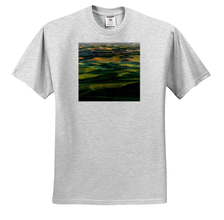 - Adult T-Shirt XL ts/_315081 3dRose Danita Delimont Farms Palouse Region of Eastern Washington State Wheat Crop