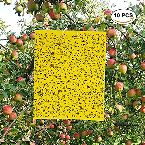 Sticky Traps, 10PCS Yellow Fly Trap Sticky with Double Side and Non Toxic Fly Sticker, Best Sticky Fly Insect for White Files,Aphids,Leaf Miner,Fungus Gnats.(10x8 Inches, included Twist Ties (Ant Glue Trap)