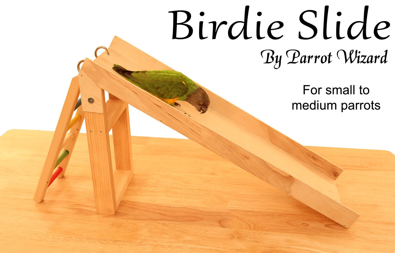 Birdie Slide - Parrot Slide Trick Training Prop by Parrot Wizard