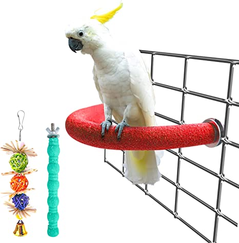 Parrot Standing Perch Toys Pet Birds Natural Wood Stand Holder Parrots Paws Grinding Perch Bird Chewing Hanging Cage Toy for Cockatiel Cockatiels Parakeets Small Medium Bird