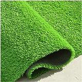 AWSAD عشب صناعي ممتاز، سجادة العشب الاصطناعي الواقعي للفناء، سجادة العشب للحيوانات الأليفة ، عشب صناعي داخلي واقعي…