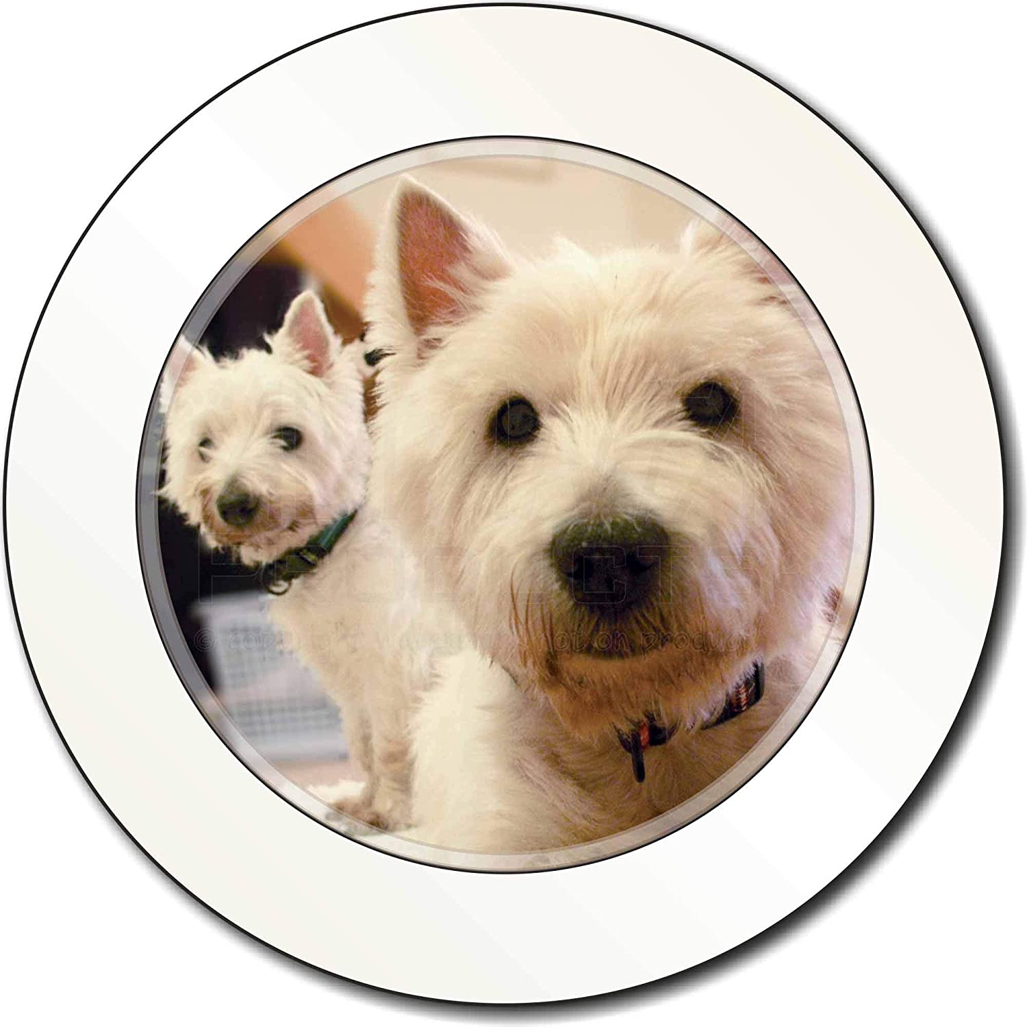 West Highland Terrier Dogs Car Tax Disc Holder New Animal Ref:AD-W1T