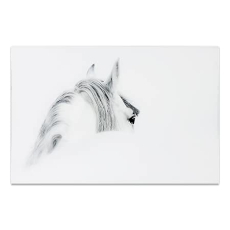 Empire Art Direct Horse 1 Frameless Tempered Glass Black and White Wall Art, 48 x 32 x 0.2 , Ready to Hang,