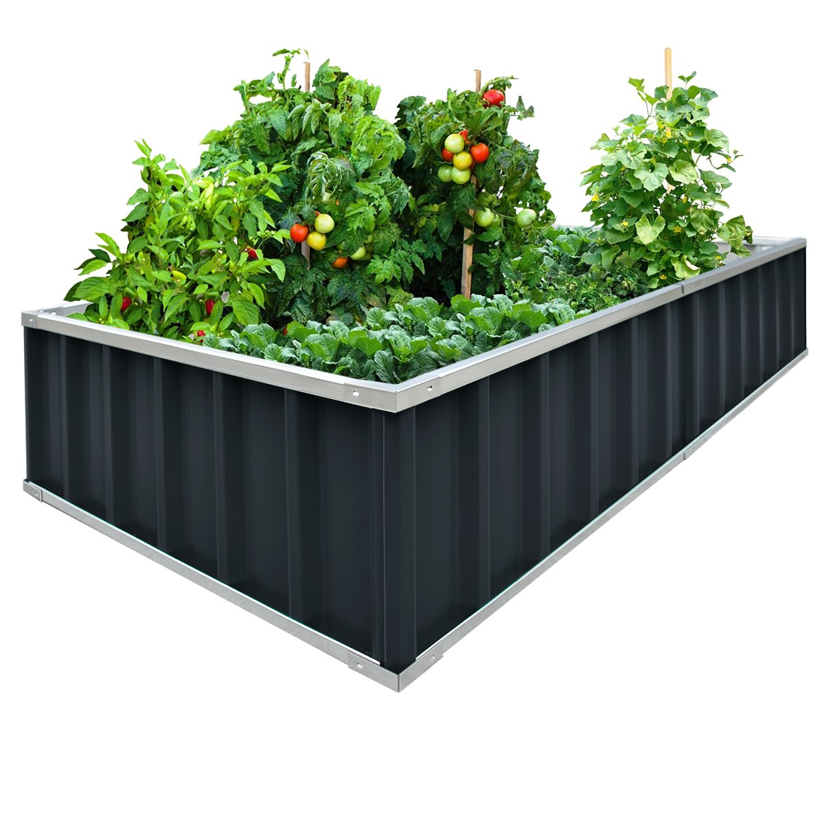 Extra-thick 2-Ply Reinforced Card Frame Raised Garden Bed Kingbird Galvanized Steel Metal Planter Kit Box Grey 68''x 36''x 12'' Including 8pcs T-types Tag a Pair of Gloves by Kingbird
