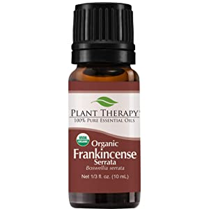 Plant Therapy Frankincense Serrata Organic Essential Oils