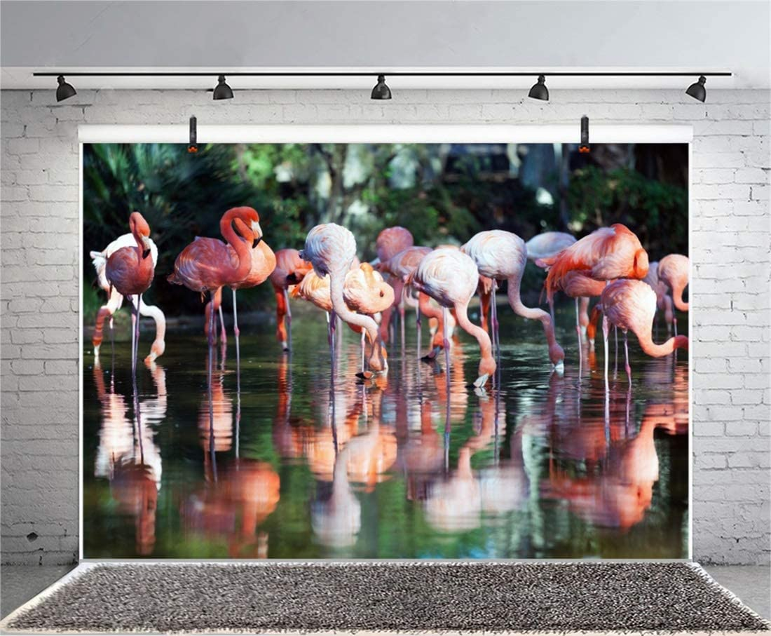 Yeele 10x8ft Flamingo Photography Background Lake Wetlands Tropical Pink Bird Blurry Forest Reflected Sunshine Photo Backdrops Portrait Child Shooting Studio Props Wallpaper