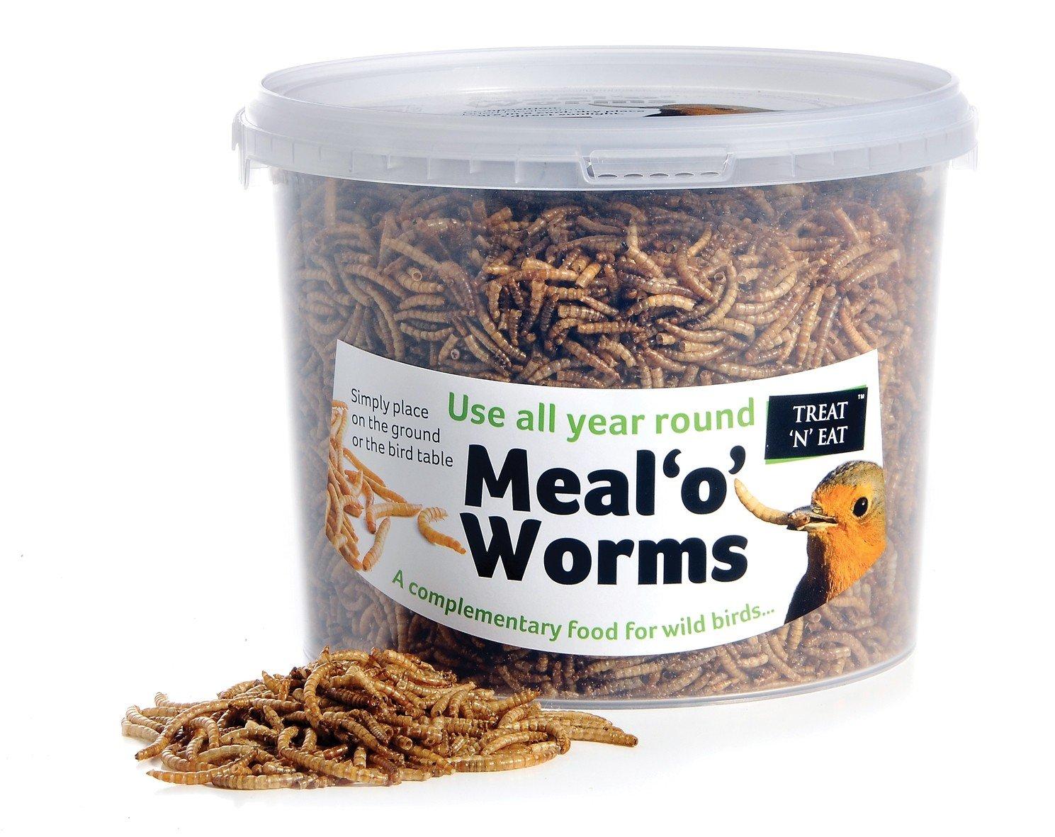 Treat N Eat Meal 'o' Worms 95g/500ml SHARPLES