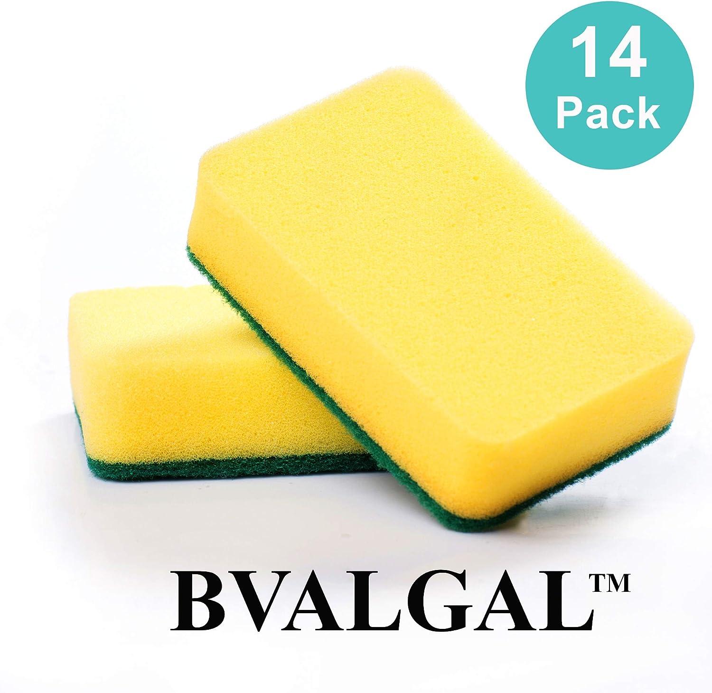Scouring Pad 10 Pack B-Valgal