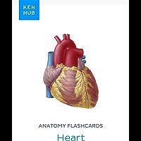 Anatomy flashcards: Heart: Learn all organs, arteries, veins and nerves on the go (Kenhub Flashcards Book 9) (English…