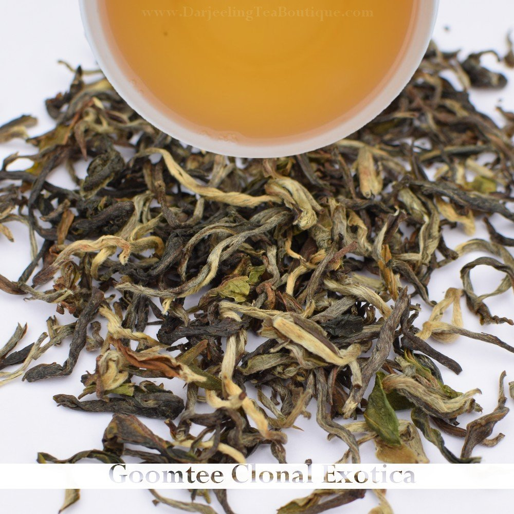2018 Darjeeling First Flush Black Tea | Goomtee, Pure P312 Cultivar | 500gm (1.1 pound) | Darjeeling Tea Boutique