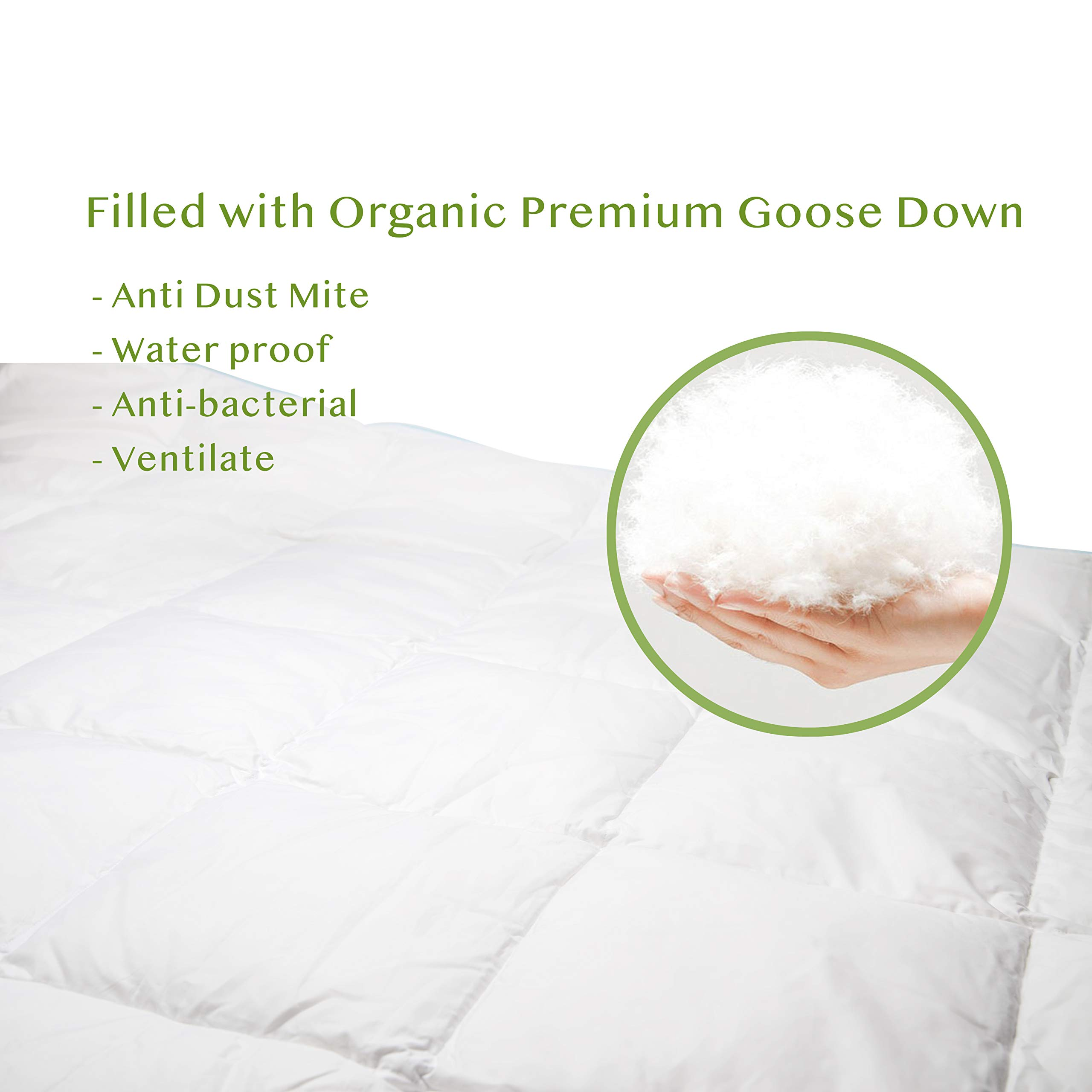 Cucuun Summer Lightweight Goose Down Comforter King Size Duvet Insert Solid White 1200 Thread Count 750+ Fill Power 100% Egyptian Cotton Shell Hypo-allergenic Down by Cucuun (Image #6)