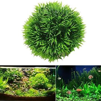 mumustar Acuario Fish Tank Verde realista Submarino plástico Planta acuática de agua Hierba bola decoración: Amazon.es: Productos para mascotas