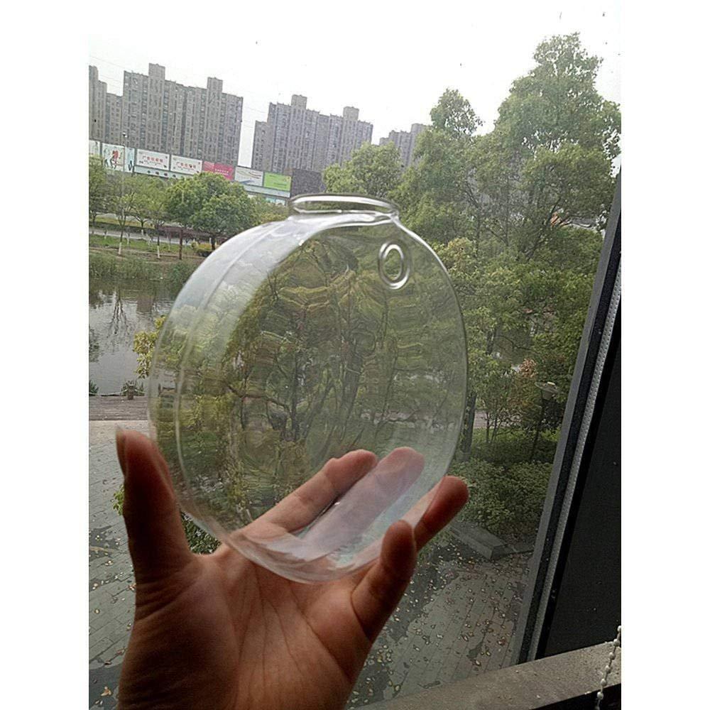 3 Bigger Discoid Glass Wall Vase Geometric Terrarium Glass Wall Mounted Plant Planters Indoor Wall Gardening Home Decor Wall Decor