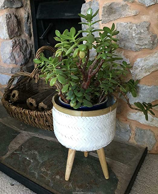 Wooden Barrel Planter Round Flower Cactus Plant Bucket Pot Rustic Home Decor