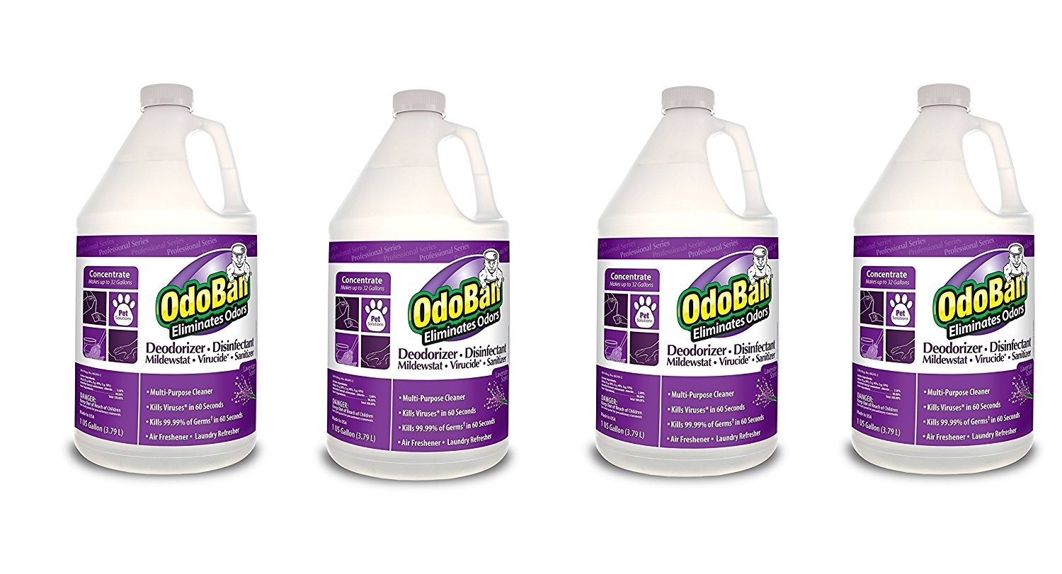 OdoBan 911162-g Disinfectant Odor Eliminator and All Purpose Cleaner Concentrate、ラベンダー香り、128オンス4ケース B01MYU7OH4