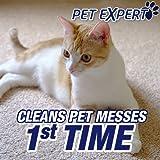 Resolve Pet Stain & Odor Carpet Cleaner