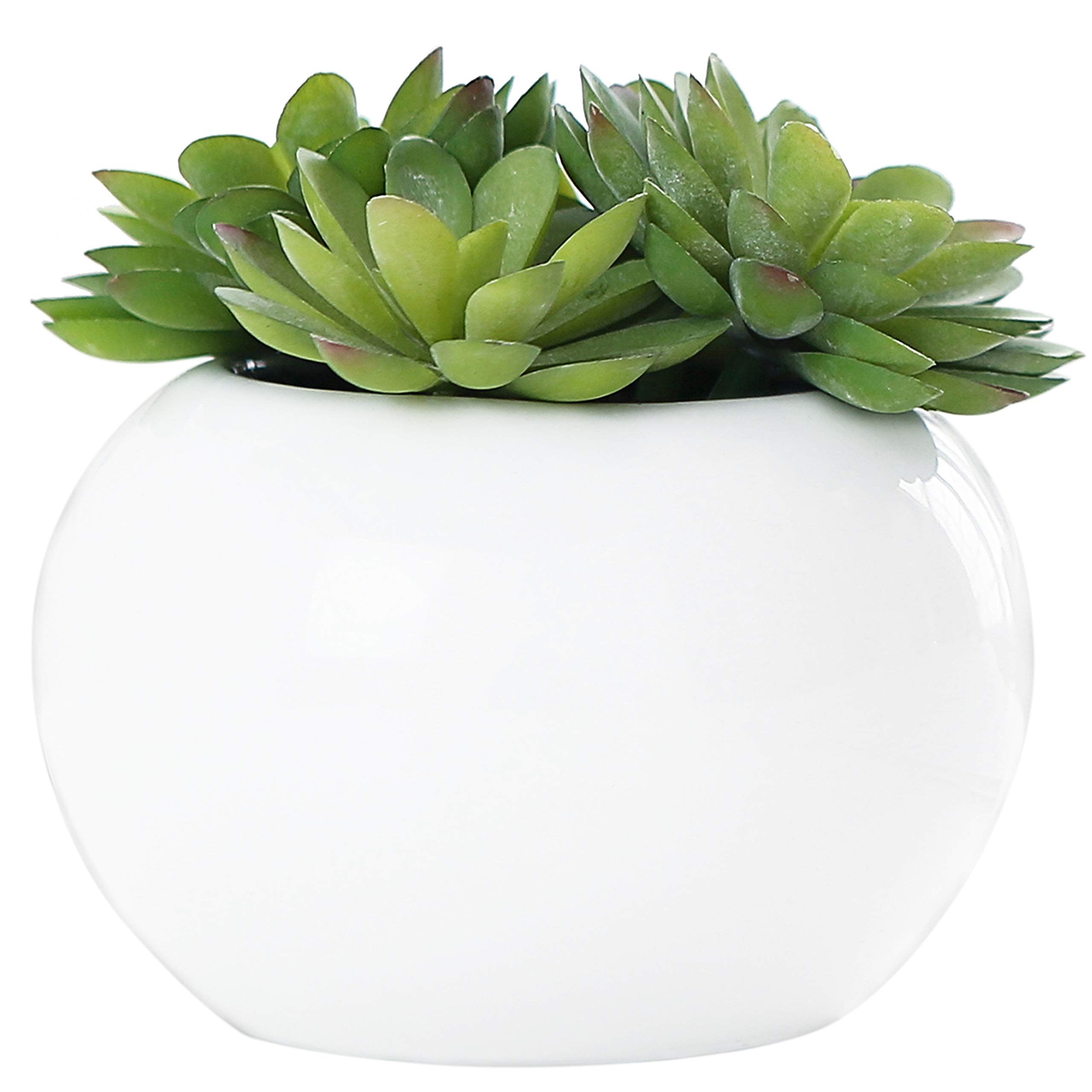 5.25 inch Round Modern Potted Green Artificial Succulent Plants w/ Glazed White Ceramic Flower Pot - MyGift