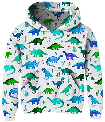 d7a3dfb86e7ce7 Kids Sweater for Toddlers Girl 3t 4t 5t 6t Green Dinosaur Cute Blue White  Hoodies Pullover