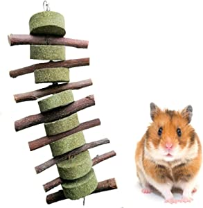 Hamster Applewood Chew Toys, Bunny Chew Toys for Teeth, Rabbit Natural Organic Apple Molar Blocks, Pet Supplies for Totoro, Rabbit Chinchilla Guinea Pig Hamsters Holland Lop Prairie Dogs Squirrels