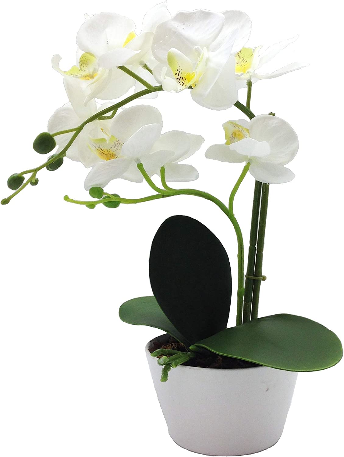 "PEPPERLONELY Brand 13"" H Artificial Ceramic Potted Plant Orchid, White"