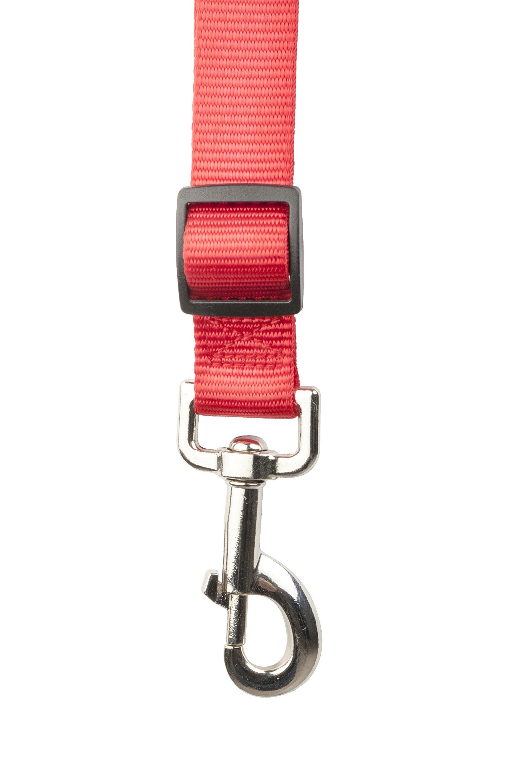 Running Dog Leash Hands Free - Including LED Light. Great for Walking, Running, Biking and Jogging (Black, Red, Blue, Orange, Pink)). (Red)