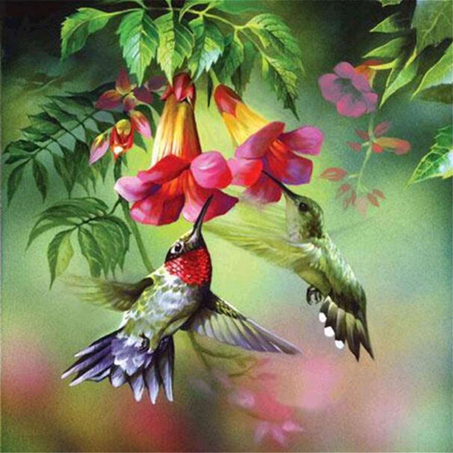 Hummingbird Gathering Honey 12x12inch DIY 5D Diamond Painting by Number Kits Full Drill Rhinestone Embroidery Cross Stitch Pictures Arts Craft for Home Wall Decor