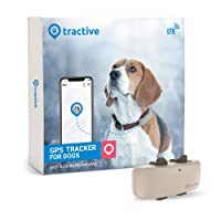 Deals on Tractive LTE GPS Dog Tracker with Unlimited Range