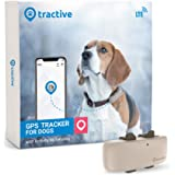 No Monthly Fee Real-Time Tracking Collar Device APP Control for Dogs and Pets Activity Monitor Petfon Dog GPS Pet Tracker