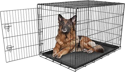 Best dog crates for small dogs : Carlson Pet Products Secure and Foldable Single Door Metal Dog Crate