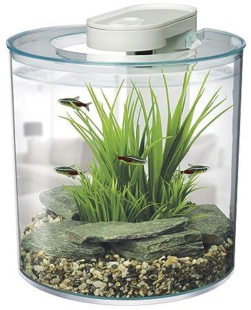 marina 360 degree aquarium starter kit office desk aquarium