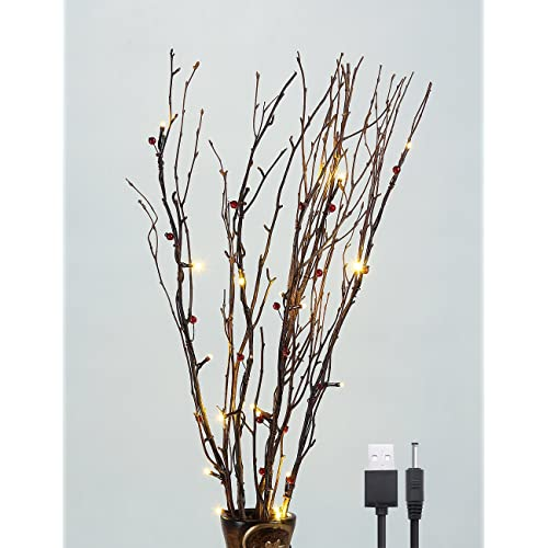 Twigs And Branches For Vases Amazon