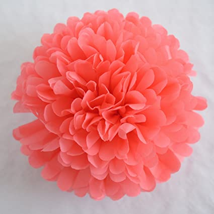 Amazon since 10 pack 10 inch tissue paper flowerstissue pom since 10 pack 10 inch tissue paper flowerstissue pom poms decortissue mightylinksfo