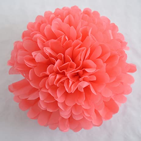 Amazon since 10 pack 10 inch tissue paper flowerstissue pom since 10 pack 10 inch tissue paper flowerstissue pom poms decortissue mightylinksfo Image collections