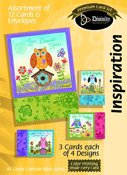 Amazon divinity boutique greeting card assortment divinity boutique greeting card assortment inspirational owl garden with scripture 21514n m4hsunfo