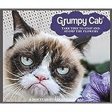 2018 Grumpy Cat Calendar (Year-In-A-Box)