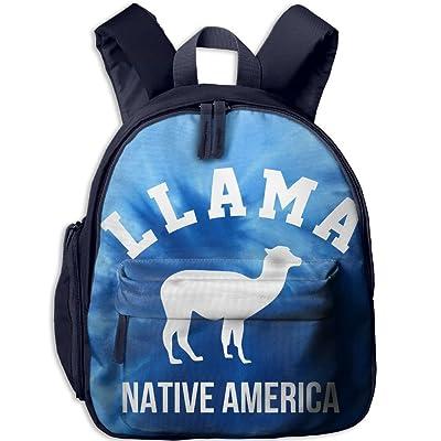 Cute Funny Llama Blue Kids Backpack Preschool Boys Girls Toddler School Bags 64893309d2804