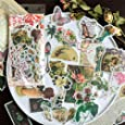 60PCS Fable Washi Decals for Decoration, Doraking DIY Vintage Decoration Stickers for Windows, Laptop, Scrapbooks, Album (Fabletown)