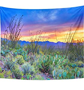 """Emvency 50""""x60"""" Indian Tapestry Mandala hippie wall hangings Desert Sunset In Saguaro National Park Near Tucson Arizona Nature Bloom Blooming Home Decor Tapestries For Bedroom"""