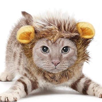 Newin Star León Mascota Mane Peluca de Disfraces de Halloween ...