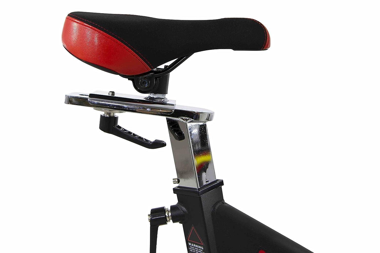 BH Fitness Modena Bicicleta de Ciclo Indoor: Amazon.es: Deportes y aire libre