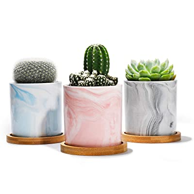 """POTEY Succulent Plant Pots Marble - 2.7"""" Ceramic Cacuts Planters Cylinder Minimalism Indoor- Drain Hole with Bamboo Tray - Set of 3, Pink, Grey, Blue: Garden & Outdoor"""