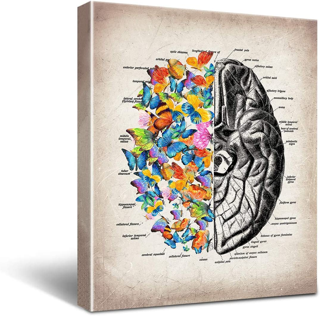 Anatomy Brain Canvas Wall Art for Doctor Office Decor, Medical School Graduation Gift, Social Worker Graduation Gift, Occupational Therapist Gift,Psychological Doctor Gift Size 8x10