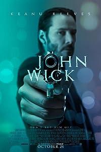 John Wick (2016) Movie Poster (24x36) - Keanu Reeves Michael Nyqvist NEW